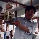 korea-snake-wine.jpg